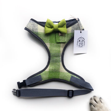 Sir Brodie - Hand-made, authentic lime green tweed harness with lime green bow-tie, pocket & bone button – XS, S, M, L, XL & Custom