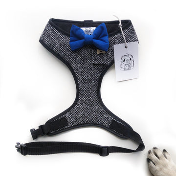Sir Bilbo - Hand-made, Irish tweed harness with royal blue bow-tie, pocket and bone button – XS, S, M, L, XL & Custom