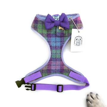 Sir Harry - Hand-made, Scottish tweed harness with purple bow-tie, pocket and bone button – XS, S, M, L & Custom