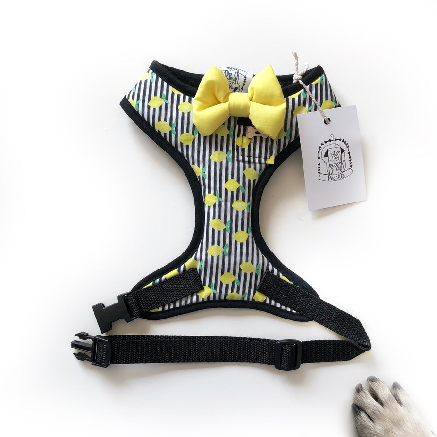 Limoncello Love - Hand-made, lemon print harness with yellow bow-tie, pocket and bone button