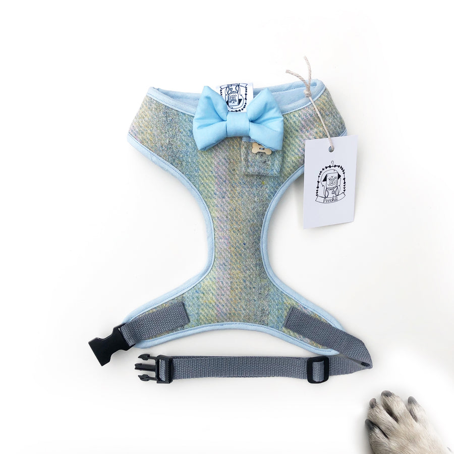 Sir Magnus - Hand-made, Scottish tweed harness with baby bow-tie, pocket and bone button – XS, S, M, L & Custom