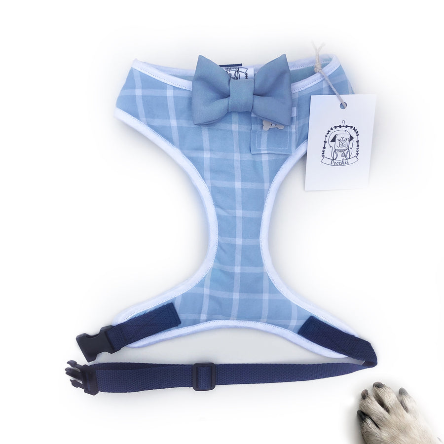 Sir Bobby - Hand-made, shirting fabric harness with blue bow-tie, pocket and bone button – XS, S, M, L & Custom