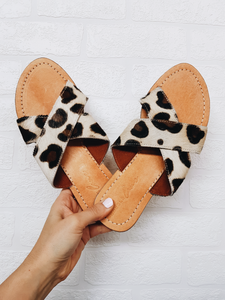 Franklin Slides - Leopard
