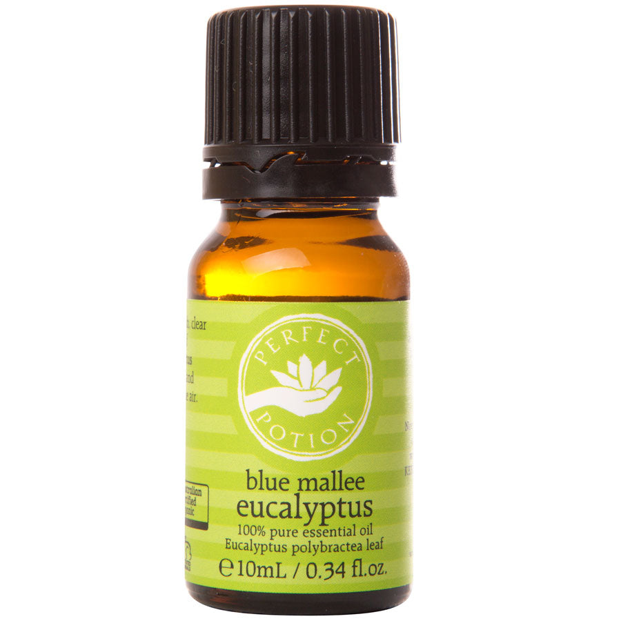 Eucalyptus Blue Mallee 100% Pure Certified Organic Essential Oil - Perfect Potion