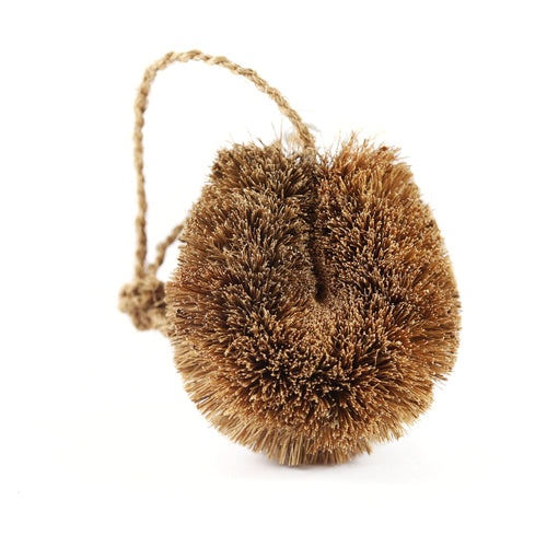 single dish scourer made of spikey coconut fibre attached on a tight wire