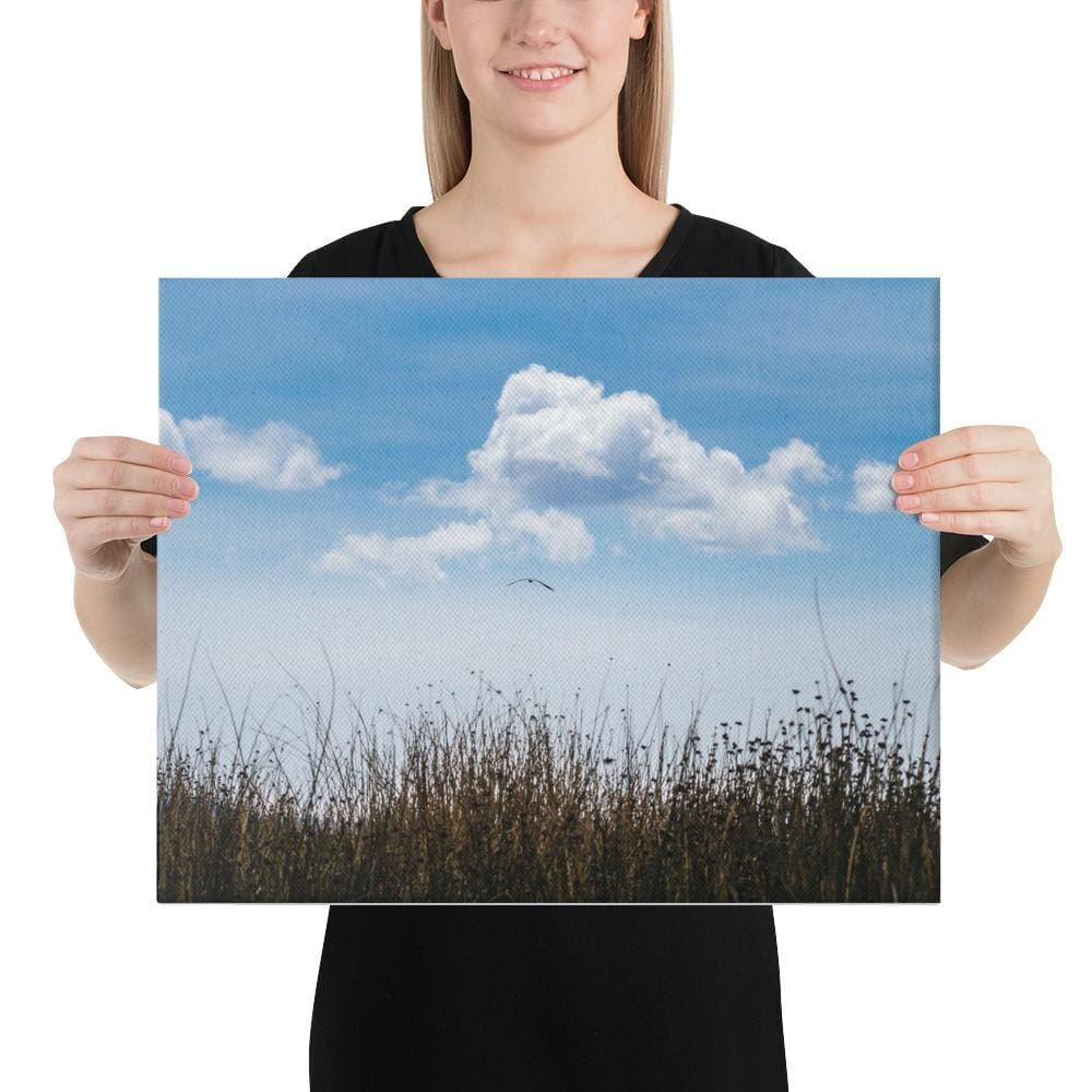 Float Canvas Art Print | 12- 36 Sizes - 16×20 - Prints