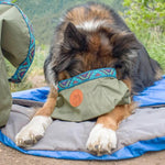Wilderdog Backpacking Bowl, Olive