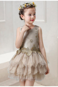 Victoria Layered Tutu Dress