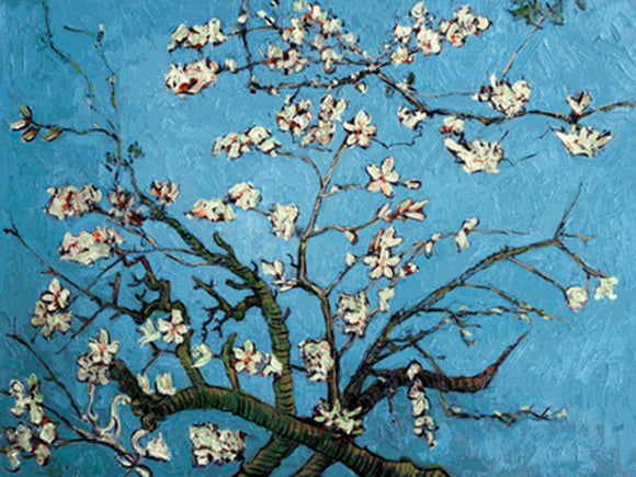Branches of an Almond Tree in Blossom Vincent Van Gogh