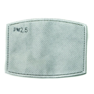 PM 2.5 Filters for Ninja Face Mask - Neter Gold - NTRGLD