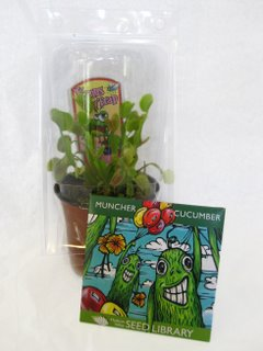 01_venus-fly-trap-and-muncher-cucumbers-1