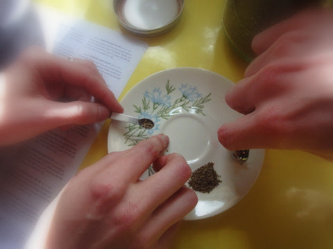 Counting seeds before packing. Photo by Ayumi Horie