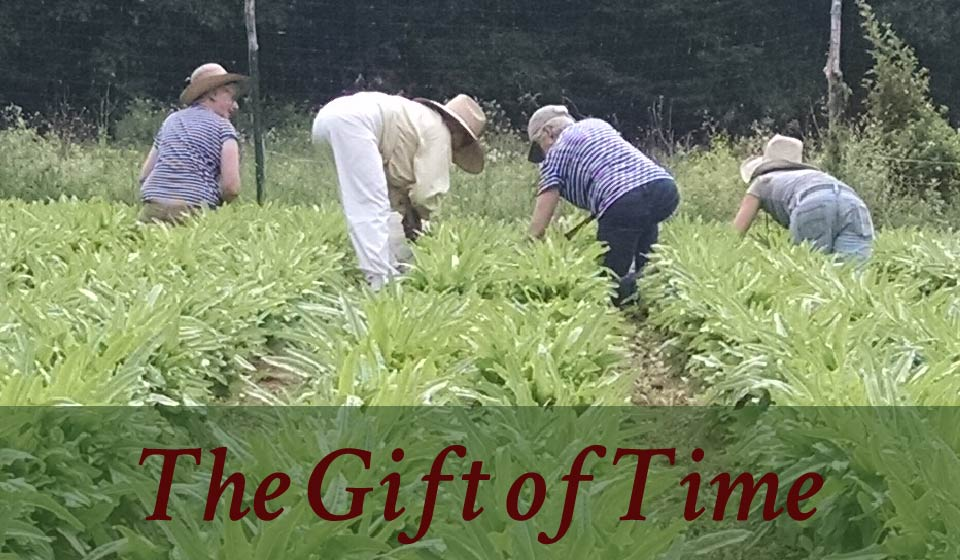 gifts for gardeners lend a hand-01