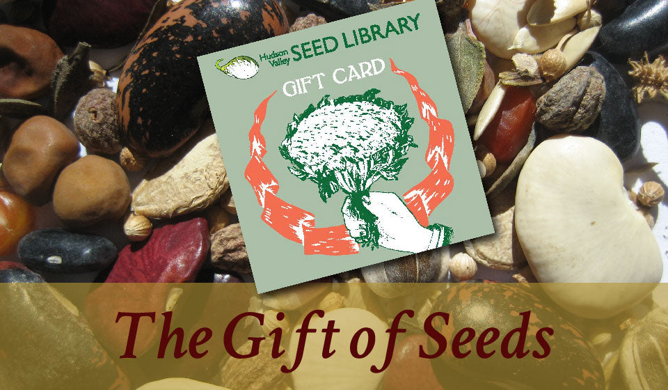 gifts for gardeners seeds-01