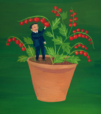Tiny Tim Tomato original by Giselle Potter