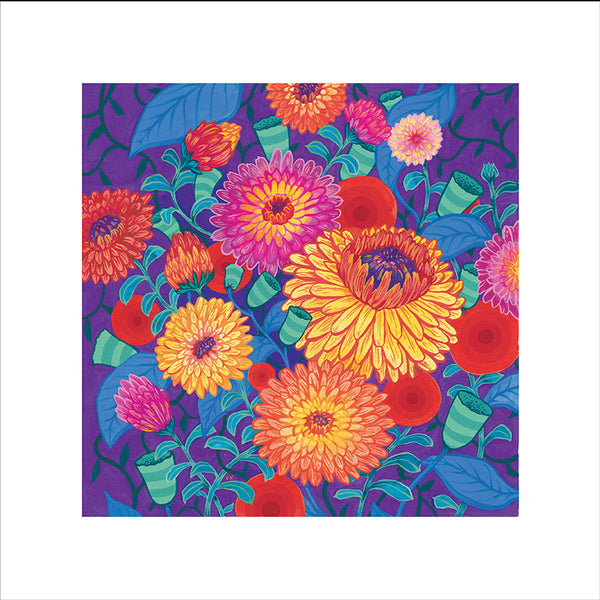 Flashback Calendula Mix Square Format Unsigned Fine Art Print