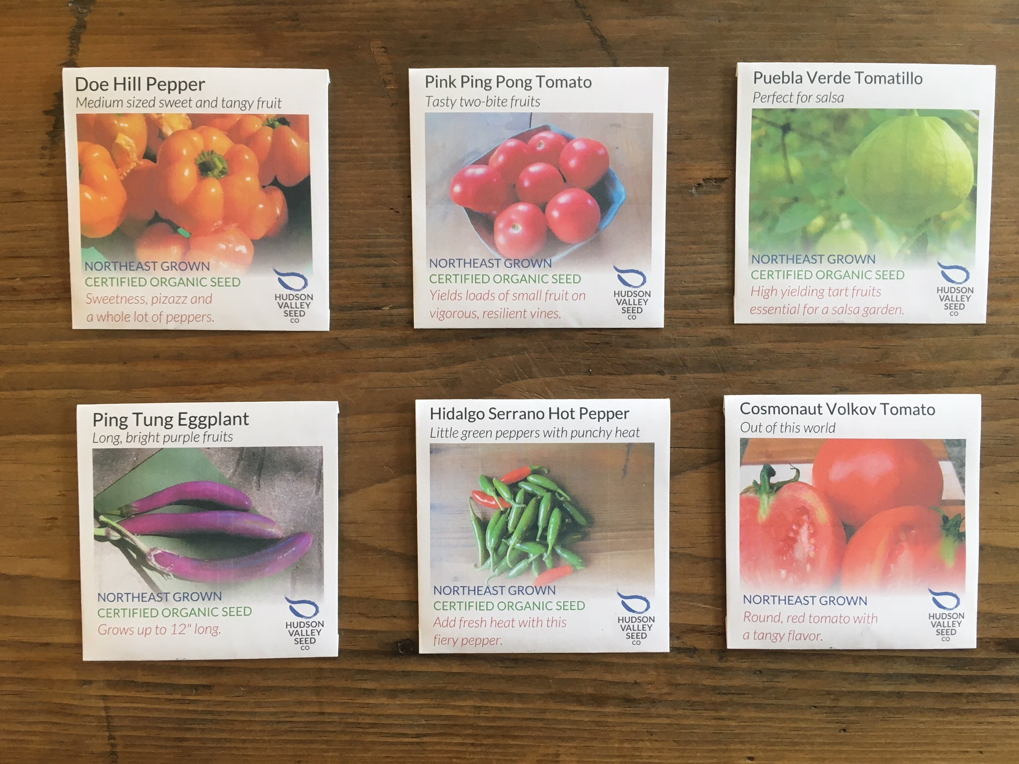 Sow Indoors Early Starter Set: Tender