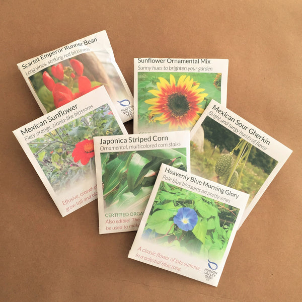 Vertical Garden Seed Collection Set