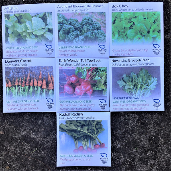 Small Fall Seed Pack Collection (7 varieties)