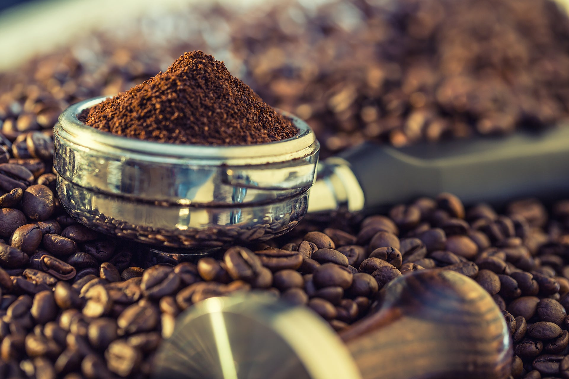 Our Artisanal Freshly Roasted Coffees