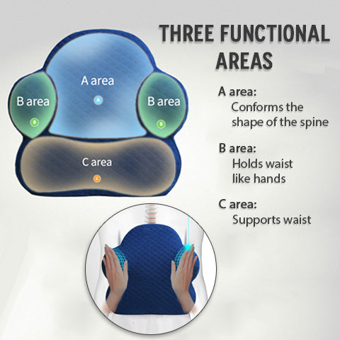Three Functional Areas of Lumbar Support Pillow