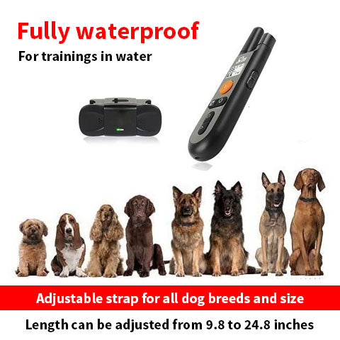 Easy Dog Training E-Collar