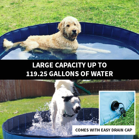 Foldable Dog Pool