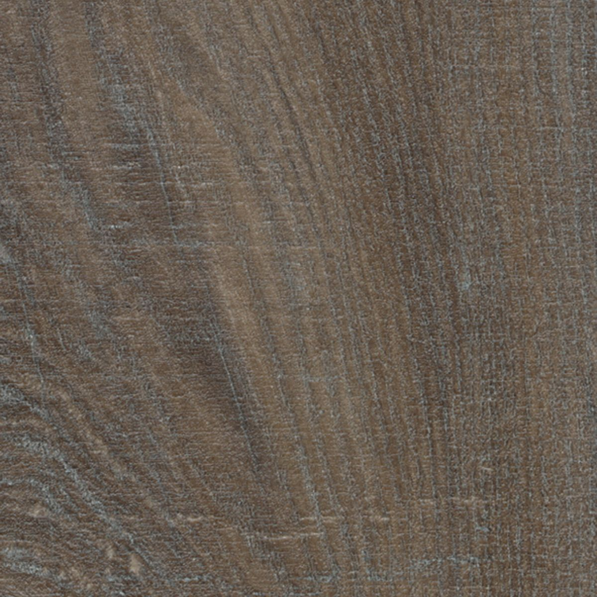 Brown Silver Rough Oak