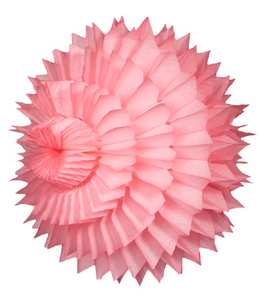 Paper Honeycomb Decorations / STARBURST LARGE