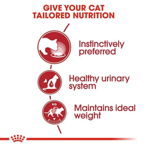 Royal Canin Feline Indoor 27 Cat Dry Food (2kg) - Dogs And The City Online