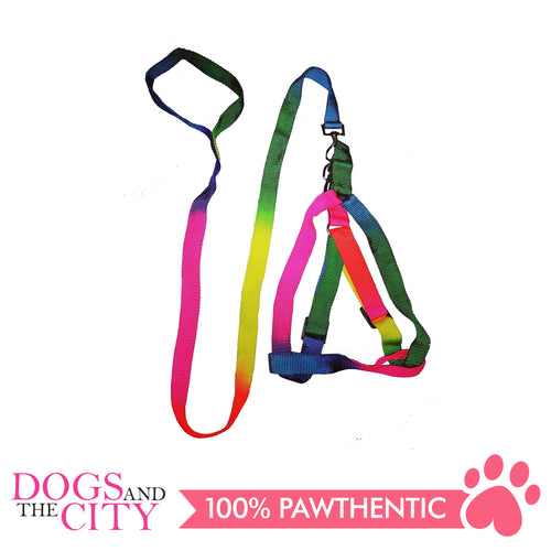 JX 2.0cm Rainbow Design Harness and Leash for Medium Breed Dogs