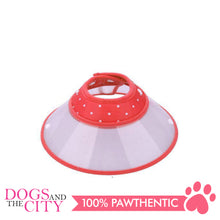 Load image into Gallery viewer, JX Elizabeth Colored Collar Medium - All Goodies for Your Pet