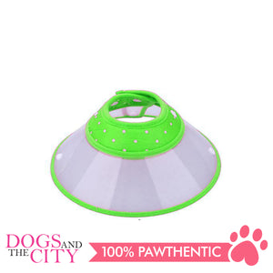 JX Elizabeth Colored Collar Large - All Goodies for Your Pet
