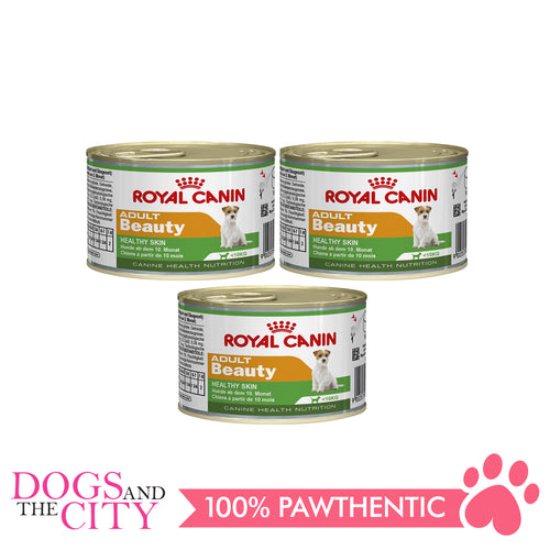 Royal Canin MINI BEAUTY Wet Adult Dog Food Cans 195G (3 cans) - Dogs And The City Online