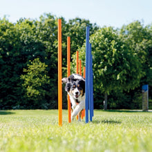 Load image into Gallery viewer, Pawise 11431 Dog Agility Weave Poles 12pcs 117x12x12cm - All Goodies for Your Pet