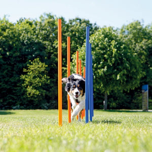 Pawise 11431 Dog Agility Weave Poles 12pcs 117x12x12cm - All Goodies for Your Pet