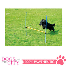 Load image into Gallery viewer, Pawise 11432 Pet Dogs Outdoor Games Agility Hurdle - All Goodies for Your Pet