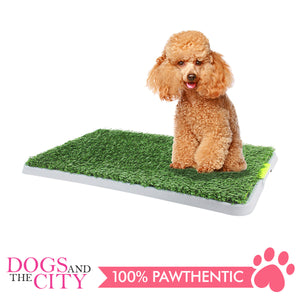 Pawise 11449 Pet Green Trainer Replacement Mat 1 piece 64.9x39x2cm - All Goodies for Your Pet