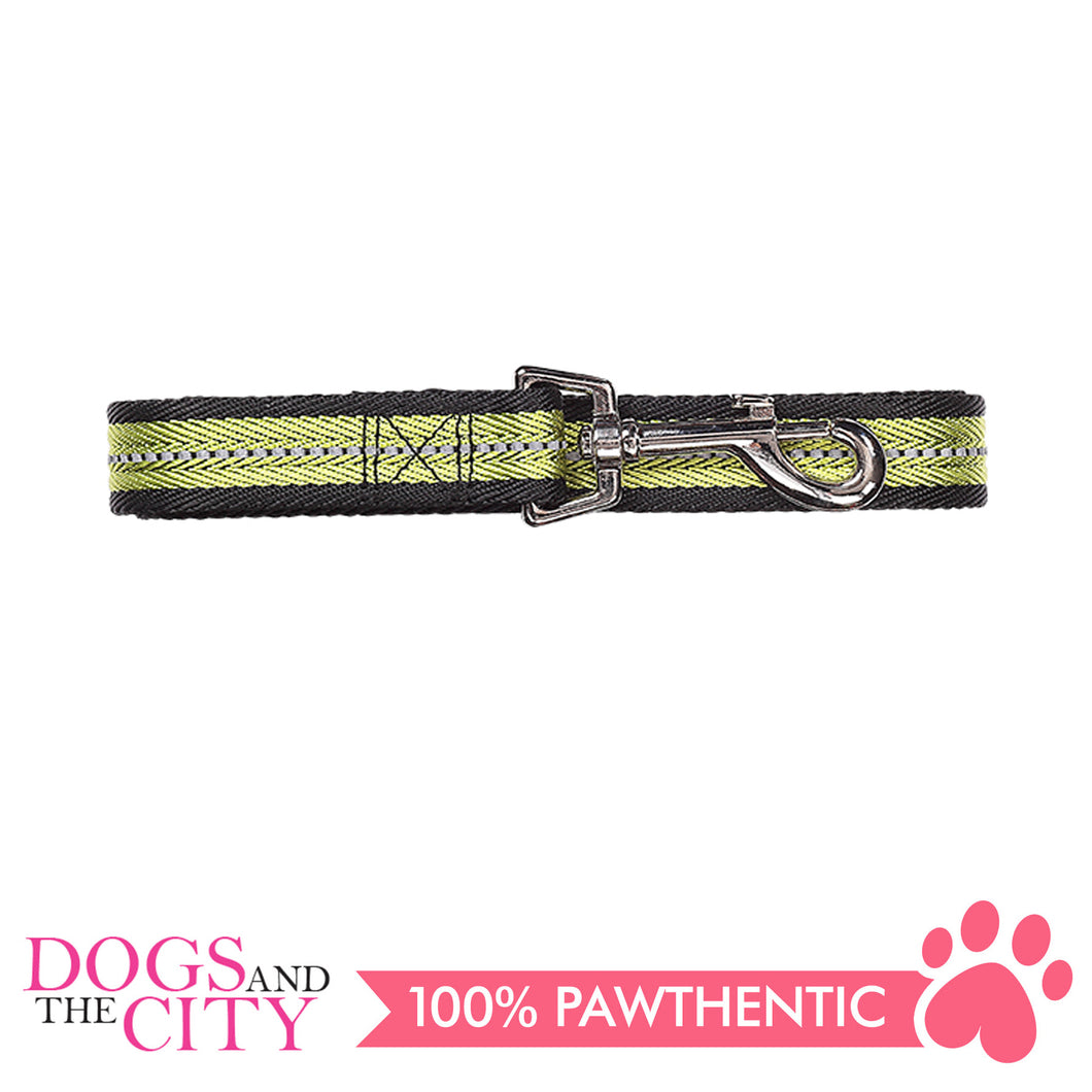 Pawise 13267 Dog Reflective Leash-Green Large (1.2M/25MM) - All Goodies for Your Pet