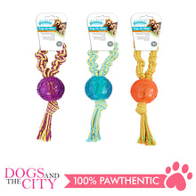 Load image into Gallery viewer, Pawise 14536 Dog Toy Tug-O-Play-Ball - All Goodies for Your Pet