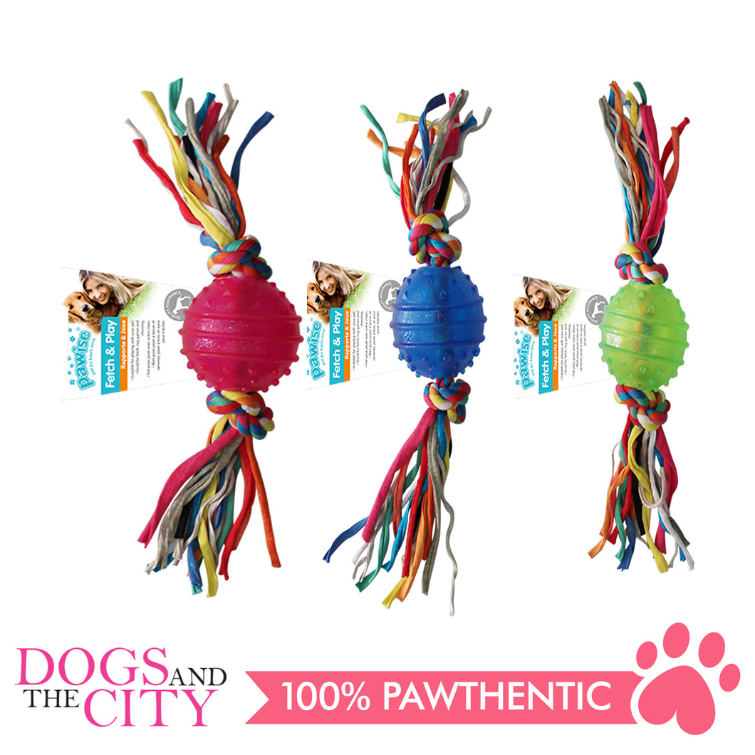 Pawise 14541 Dog Toy TPR Ball 6.3CM w/Rope - All Goodies for Your Pet