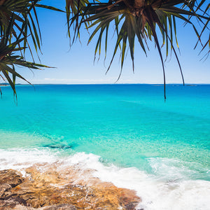 rocky shore with calm blue ocean at Straddie with overhanging pandanus palms leaves