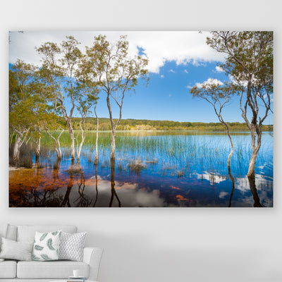 wall art photography lake and trees with reflections on a wall in a living room