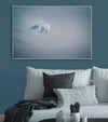 Gentle blue abstract photograph of a bird in flight photo by Julie Sisco north stradbroke island displayed in living room with blue wall