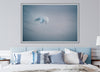 Gentle blue abstract photograph of a bird in flight photo by Julie Sisco north stradbroke island displayed in master bedroom