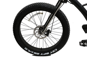 California Bicycle Factory Eagle Electric Fat Tire Beach Cruiser Bicycle Front Tire Disc Brakes