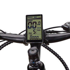 "Nakto Discovery 20"" Fat Tire Electric Bike Display"