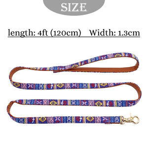 Beachy Baja Dog Leash - Shop & Dog