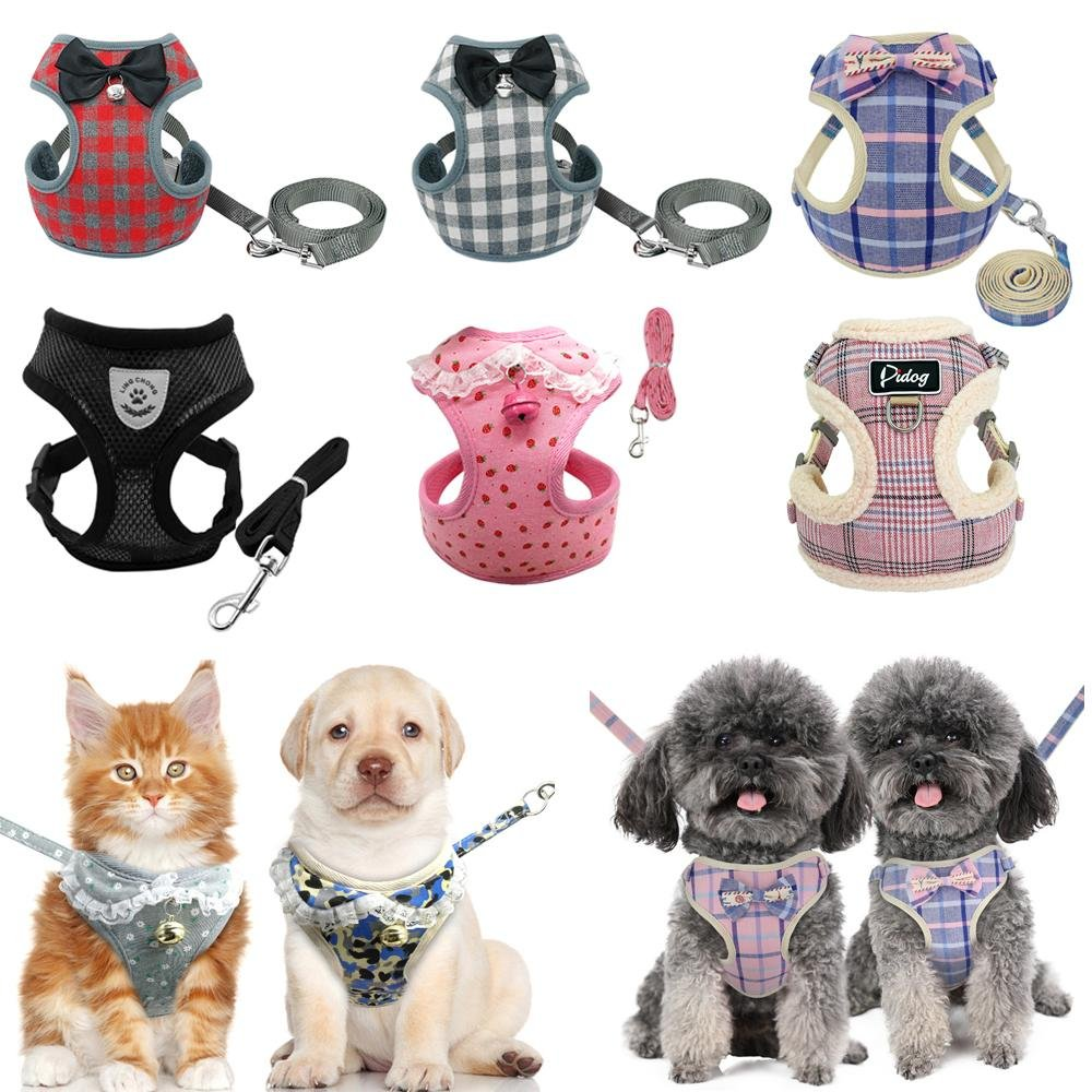 Bells and Bowties Matching Fashion Harness And Leash Set - Shop & Dog
