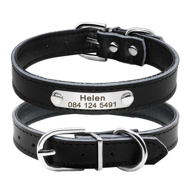 Leather Dog Collar Personalised - Shop & Dog